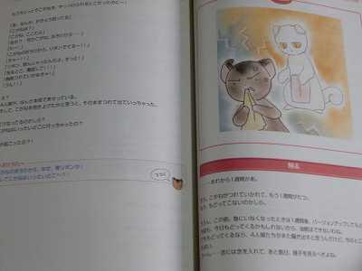 Livres illustrés de Clamp SCIMG0070