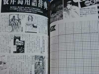 JAPAN Higanjima Guide book Tebikisho Rei